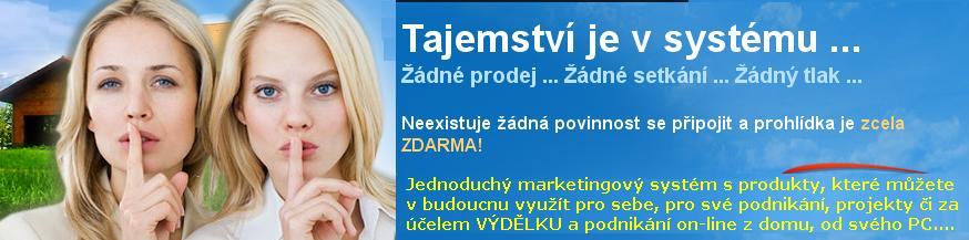 pracuj z domu, stiforp, práce od PC, online marketing, stiforp profits
